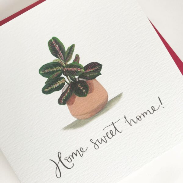 Home sweet home greeting card with house plant