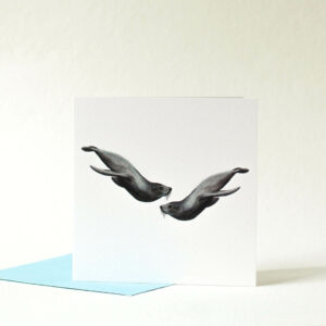 Printed card - two seals swimming