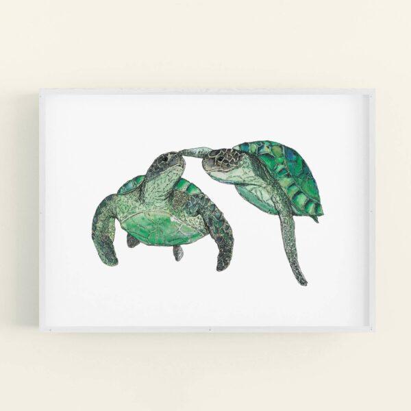 Illustration of 2 turtles swimming - white frame