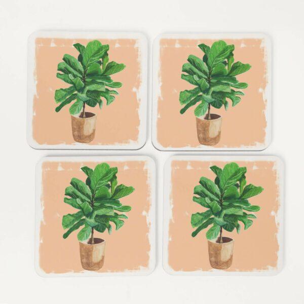 4 fiddle leaf fig house plant coasters
