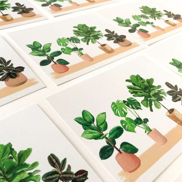 Illustrated house plant postcards