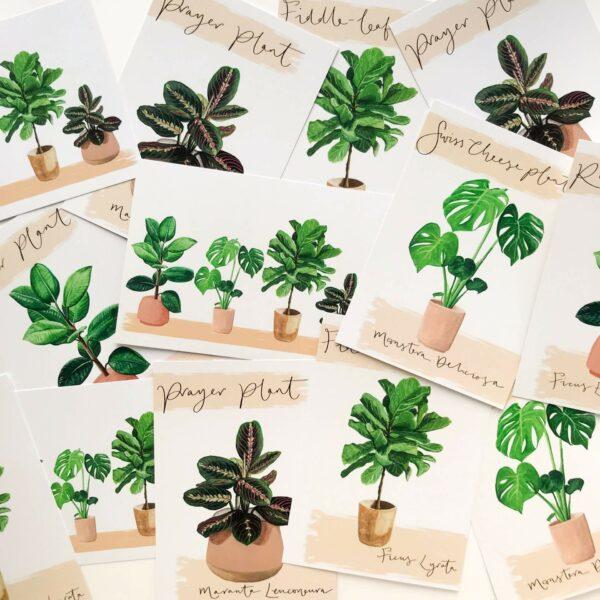 Illustrated house plant postcards scattered on a desk