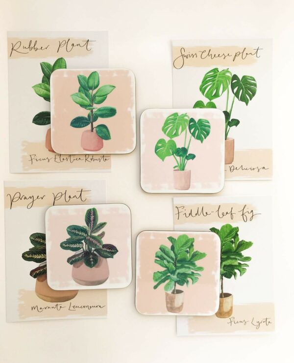 matching illustrated house plant selection of gifts, including postcards and coasters