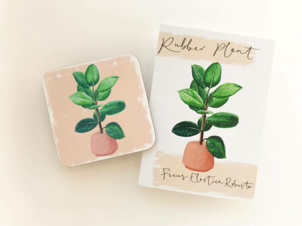 Stack of house plant coasters with rubber plant illustration design and matching postcards