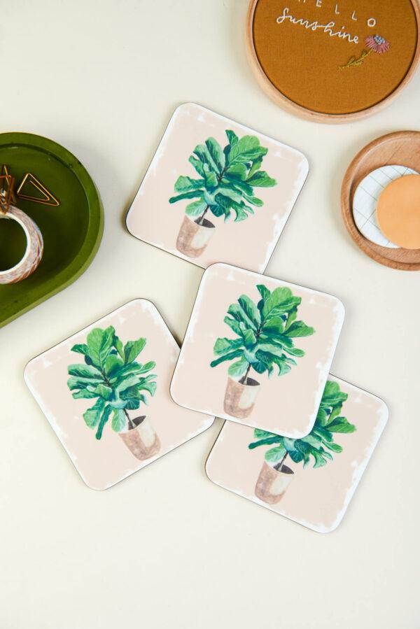 4 house plant coasters with fiddle leaf fig illustration design