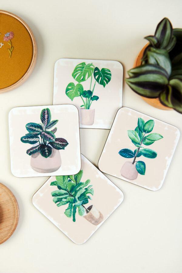 Set of 4 illustrated house plant coasters