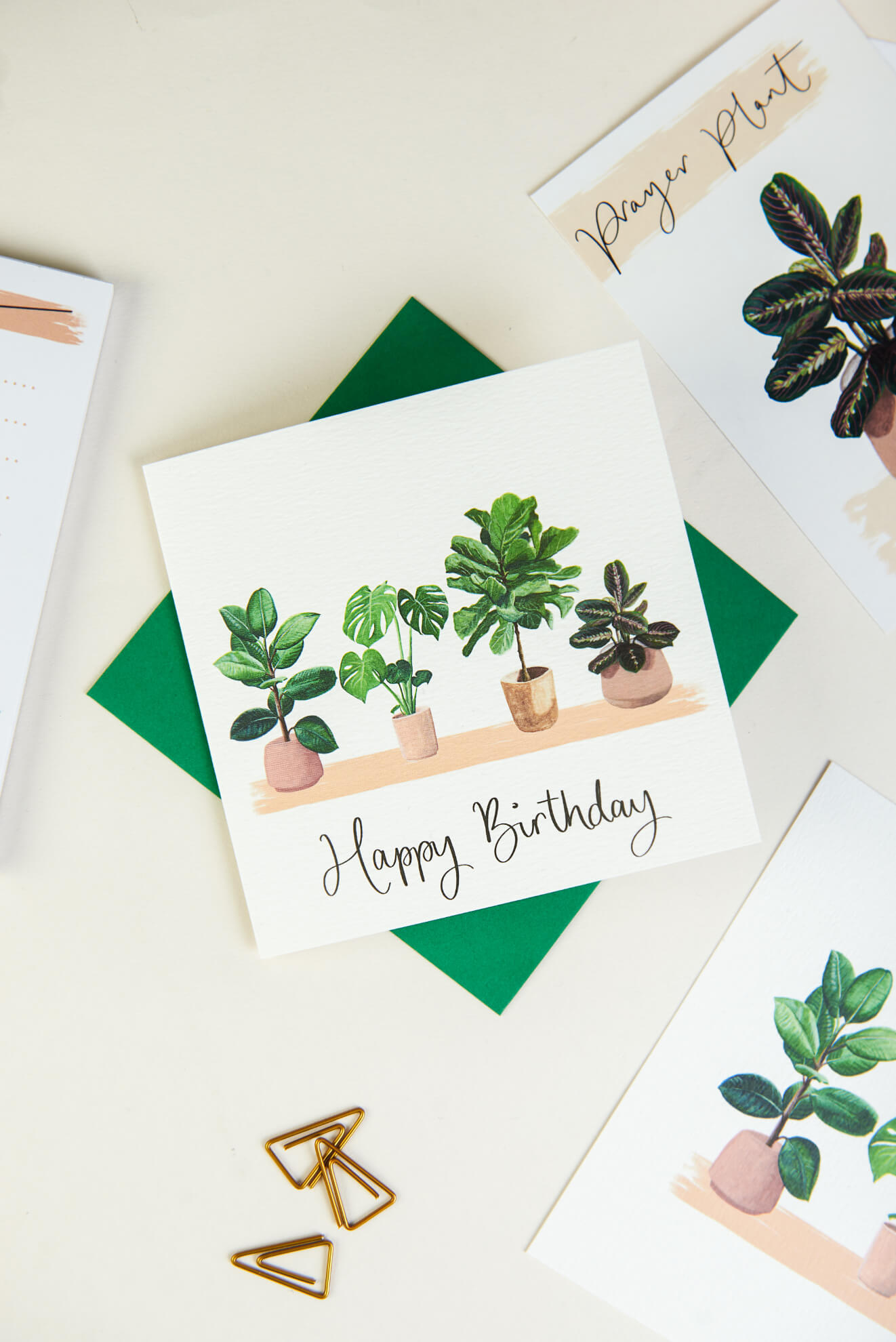 house plants happy birthday card and postcards