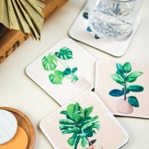 house plants coaster set