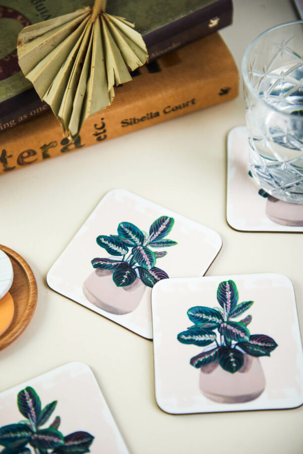 prayer plant coasters set